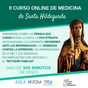 Copia de II CURSO ONLINE DE MEDICINA